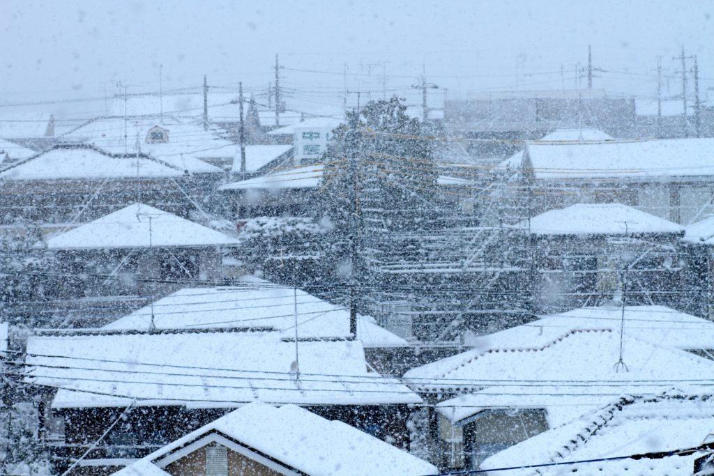 屋上 積雪対策